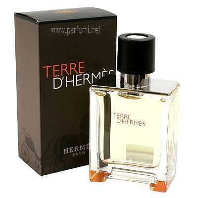 parfum terre d 39 hermes pour homme 100 mi. Black Bedroom Furniture Sets. Home Design Ideas